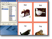 Picture This Professional